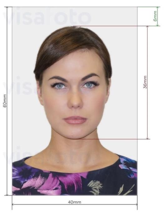 Visa sample in photo size